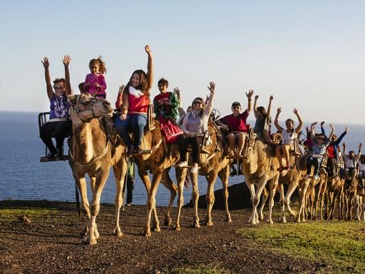 Oasis-Park-Fuerteventura_safari-de-camellos-528x396