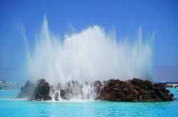 Tenerife insular y universal